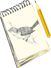 notebook-paper-pencil-drawing-sketch-bird-draw