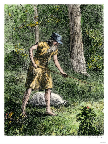 johnny-appleseed-planting-apple-trees-in-the-ohio-wilderness