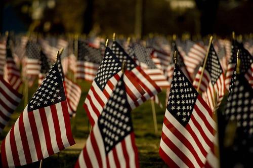 veterans-flags