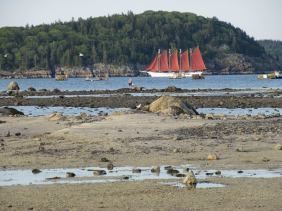 Bar Harbor Sand Bar (3)
