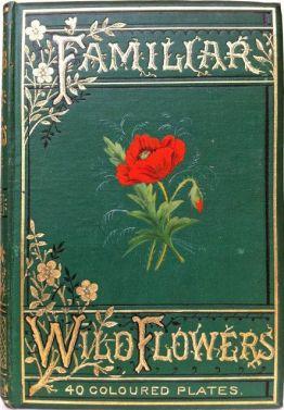 70d8e2885dab7ae8a98b6070bb3c9707--vintage-book-covers-vintage-books